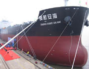 CSC_Phoenix_dry_bulk_port_top.jpg