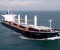 Cargo dry bulk ship 41 small.jpg