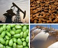 Commodities photo 20.jpg