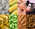 Commodities photo 22.jpg