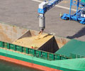 MP_01_Grain loading_ship_outer harbour_great yarmouth_