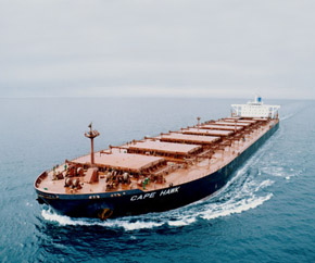 baltic_dry_cape_hawk 290x242