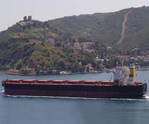 Diana_Panamax_dry_bulk_carrier 290x242