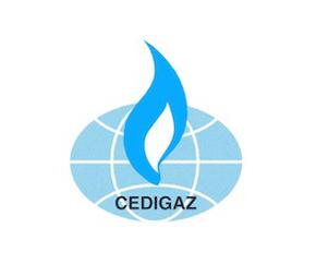 Cedigaz 290x242