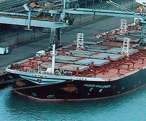 dry_bulk_port_coal_port 290x242