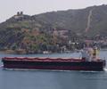 Diana_Panamax_dry_bulk_carrier