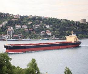Diana_Shipping_dry_bulk 290x242
