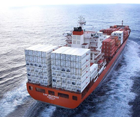 cap_beatrice_containership 290x242