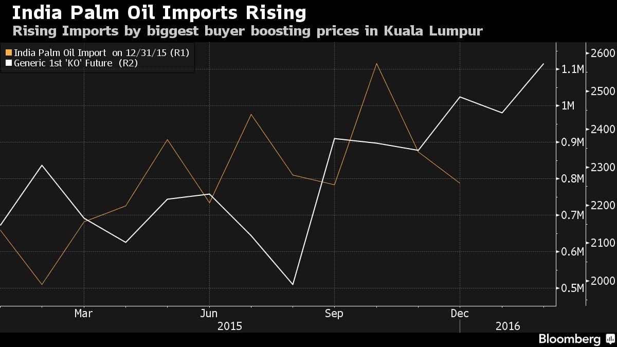 Palm oil broker malaysia