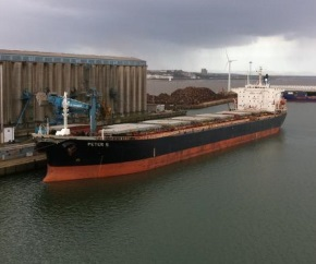 bulk_carrier_grain_terminal 290x242