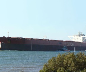 dry_bulk_carrier_Bet_Scouter 290x242