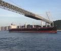 OCEAN_PROSPERITY_NYK_dry_bulk_carrier